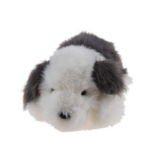 Ležící ovčácký pes
