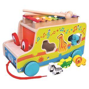 Alltoys Auto vkádačka s xylofonem